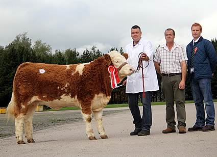 Keith Nelson, Rosslea, exhibited the female champion Scribby Farms Darlene. He was congratulated by Stephen Buick, Bruces Hill, sponsor; and judge Christopher Weatherup, Ballyclare.