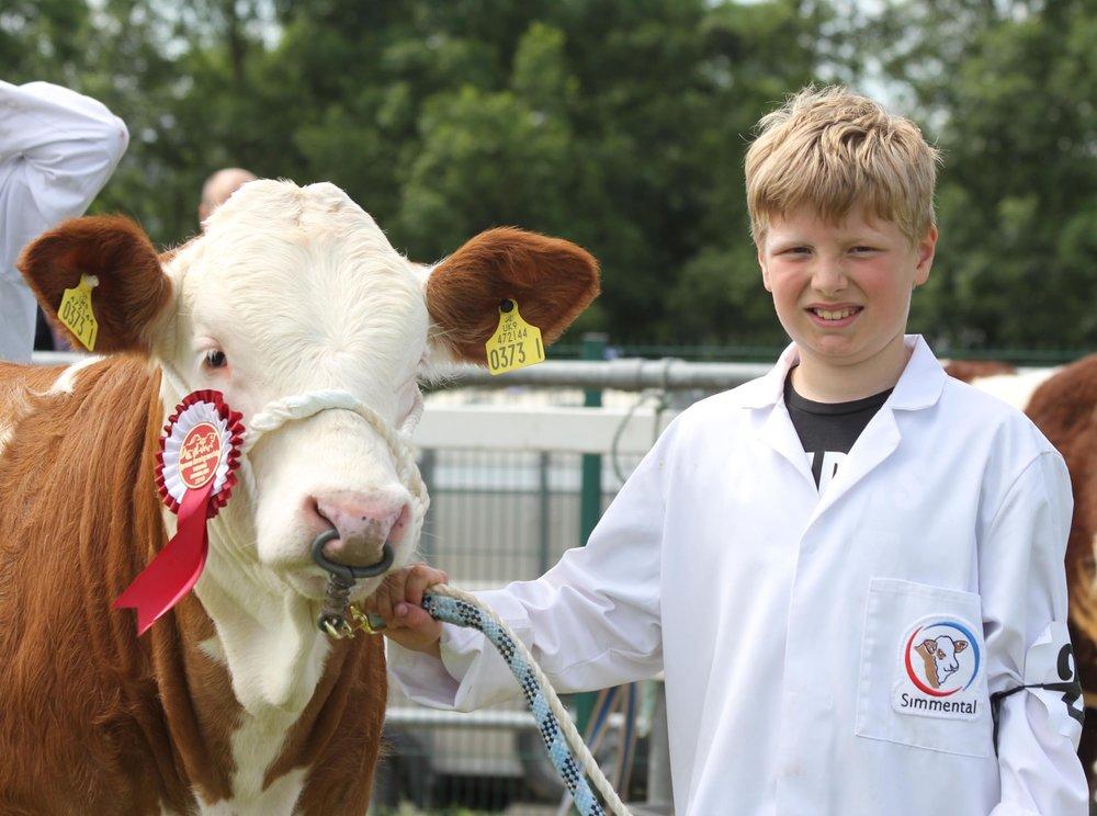 Prize winning Simmental young handler Jason Little.
