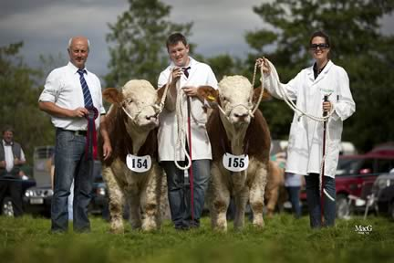 Ballymoney Derek and Ballymoney David owned by Noel Kilpatrick, Banbridge, were runners-up in the Ivomec Super Simmental Pair of the Year competition. Handlers Alan Shortt and Sarah Kilpatrick were congratulated by Nigel Glasgow, chairman.