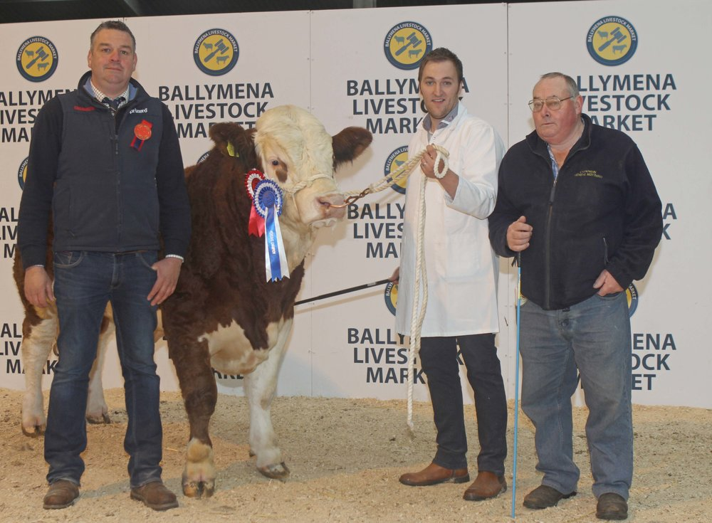 Paul Reaney exhibited the reserve champion Cladymore Justice sold for 2,700gns. Adding their congratulations are judge Keith Nelson, Rosslea; and sponsor Jonny Connon, Connon General Merchants.