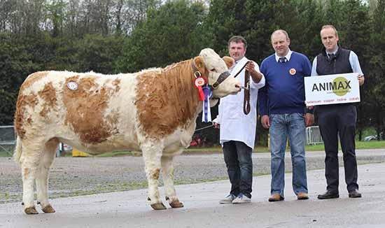 Alan Wilson, Newry, exhibited the reserve female champion Ballinlare Farm Dancer. Also pictured are judge Matthew Cunning, Glarryford; and sponsor Neil Acheson, Animax.