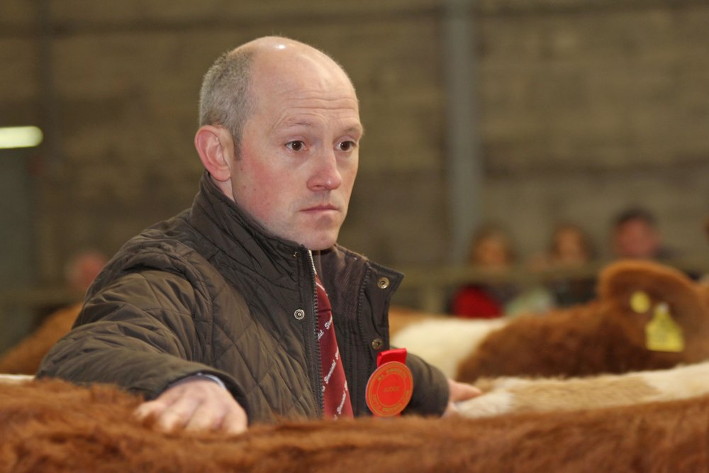 Dungannon Simmental judge Frank Kelly from Tempo.