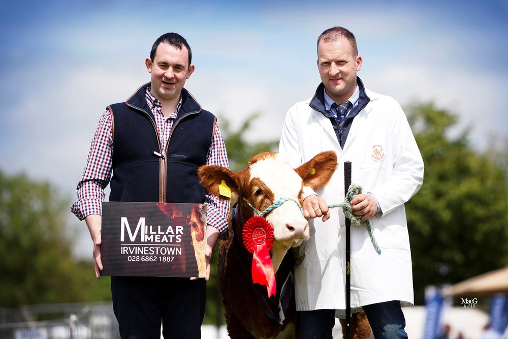 Ranfurly Weikel 30th exhibited by Jonny Hazelton, Dungannon, was the winner of the heifer calf class. Making the presentation is sponsor Stephen Millar, Millar Meats.