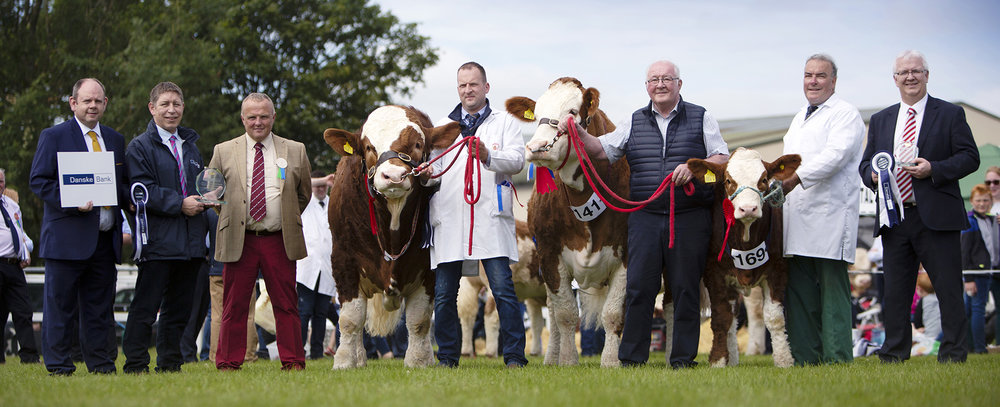 The Ranfurly Herd, Dungannon, won the supreme and reserve championships at the NI National Simmental Show at Omagh. Pictured from left: Adrian Adams and Rodney Brown, Danske Bank; judge Michael Barlow, Lancashire; Jonny and David Hazelton and David Lowry; and Kilian McDonnell, Danske Bank.