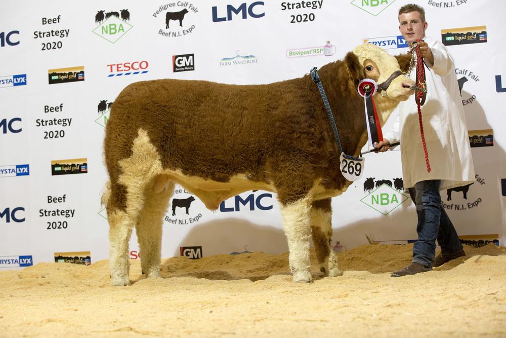 Alan Burleigh with his first prize winning baby bull calf Derrycallaghan Gambler.