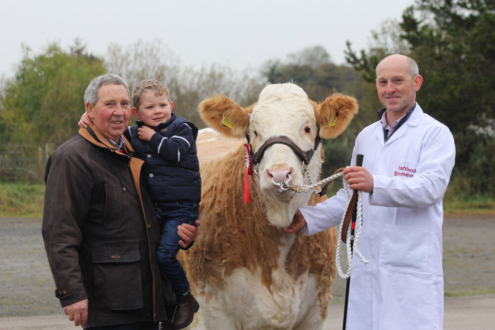 Three generations of the Kelly family, Pat, Frank and Fintan, from Tempo, County Fermanagh, with their first prize winning heifer Ashland Topaz Janet, sold for a top price of 2,800gns at the NI Simmental Club's autumn show and sale in Dungannon.