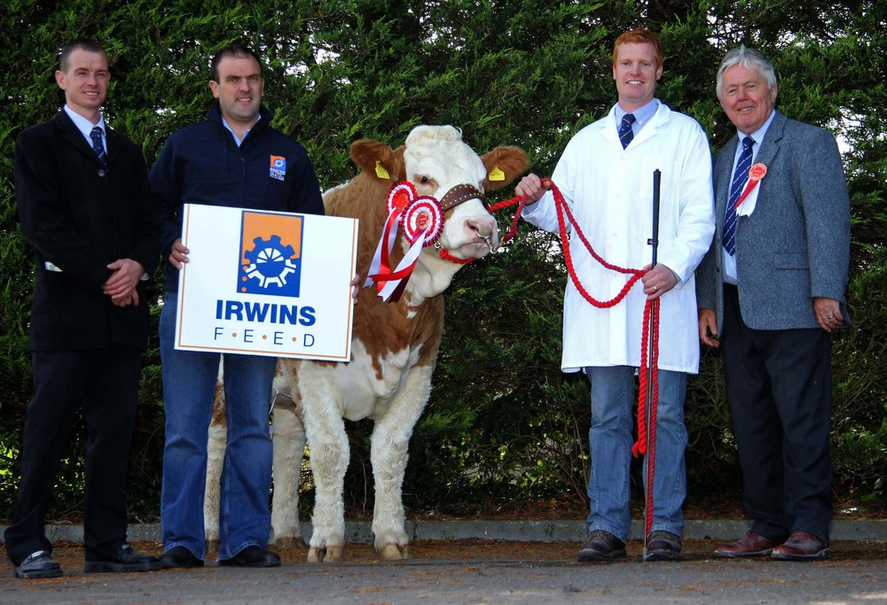 Supreme champion was Lisglass Emerald exhibited by Christopher Weatherup. From left: club chairman Richard Rodgers; Ian Cummins, Irwins Feed sponsor; and judge David Donnelly.