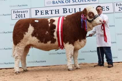 Female Champion Denizes Nelly bred and owned by M A Barlow sold for 9,200gns.