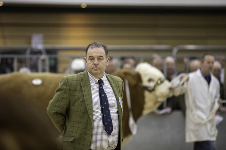 Aberdeen and Northern Marts Spring Sale 27th February 2019