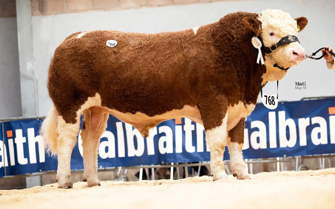 Stirling May Sale report