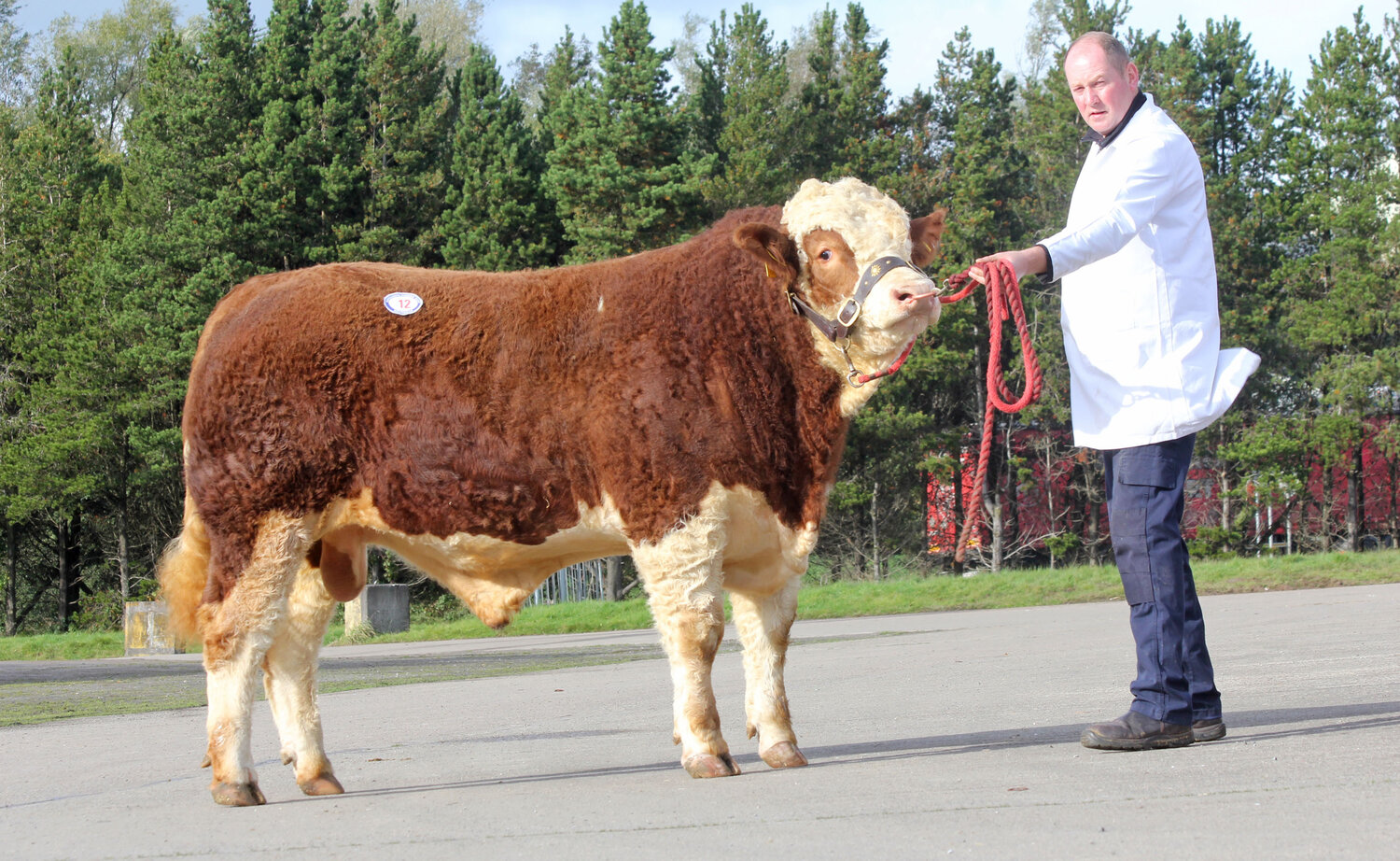 DRUMACRITTEN KYLE SOLD FOR 3,000GNS