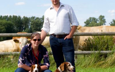 HEMINGFORD PEDIGREE SIMMENTAL HEIFER TO BE AUCTIONED WITH SALE PROCEEDS DONATED TO 'BREAST CANCER NOW' CHARITY